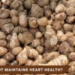 How arrowroot maintains heart health?