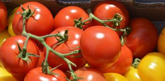 Tomatoes – Natural remedy for good vision