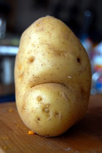 2914549247 ce26f3f723 z 200x300 - 9 Amazing Facts about Potatoes