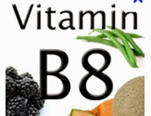 health benefits and sources of vitamin B8