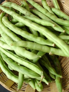 french beans 225x300 - 10 amazing health benefits of French beans