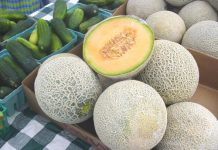 11 amazing Health benefits of honeymelon