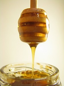 2751693052 bcf531f3c6 o 225x300 - Health Benefits Of Honey & Milk