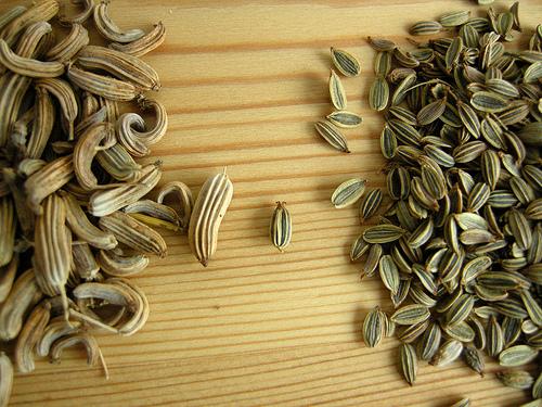 Saunf tea- really works for menstrual cramps