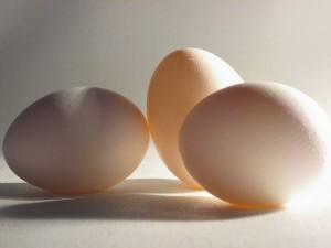 3694187993 5063436629 z 300x225 - Dangers Of Eating Rotten Eggs