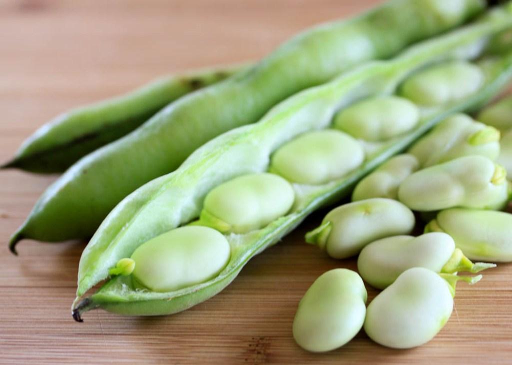 health benefits of fava beans
