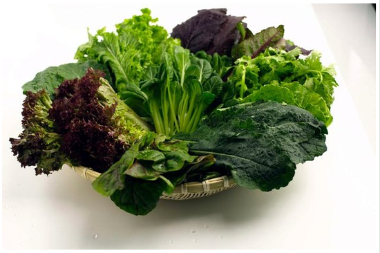 6 Reasons To Avoid Leafy Vegetables In Monsoon