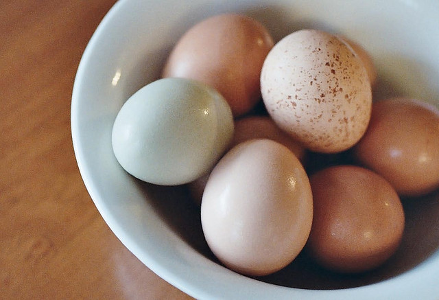 Egg products for beautiful skin