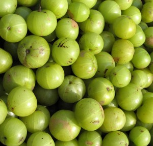 amla 300x287 - Stay Young With These Foods