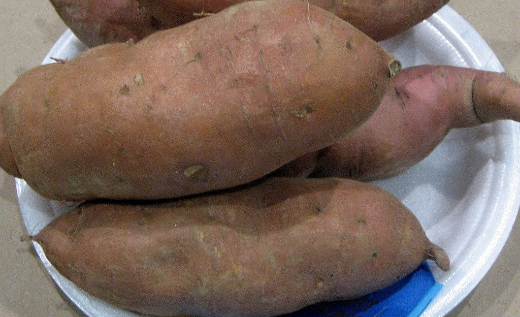 swpt2 e1443779651804 1024x624 - 10 Reasons To Have Sweet Potatoes In Diabetes