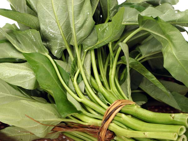 Eat These Foods To Prevent Grey Hair