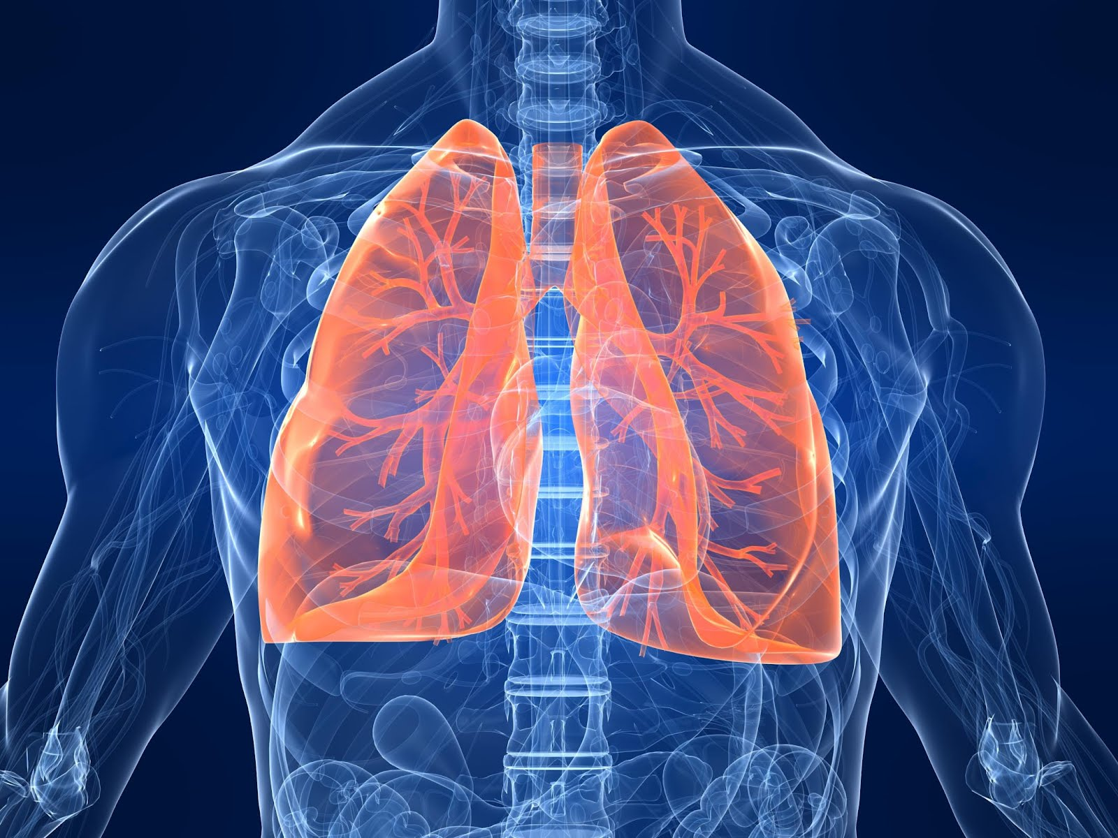 Cleanse Your Lungs In 2 Days