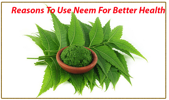 Reasons To Use Neem For Better Health