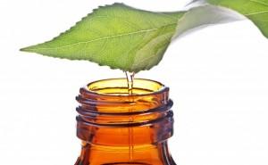 Tea Tree Oil 300x185 - 8 Green Remedies To Treat Blind Pimples