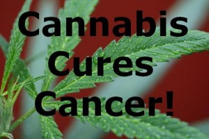 How Cannabis Can Kill Cancer