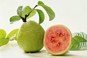 19 Amazing Reasons to Eat Guava This Summer 300x200 - Top 11 amazing health benefits of guava