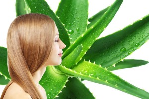 aloe vera shampoo1 300x200 - Incredible uses of aloe vera gel for face, health and skin