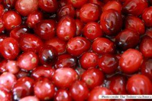 The Health Benefits of Cranberry Juice