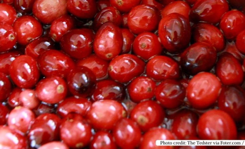 The Health Benefits of Cranberry Juice