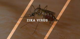 Eight best ways to avoid Zika virus infection