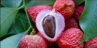 Benefits Of Lychee for health