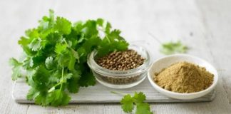 benefits of Cilantro for Skin And Hair
