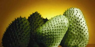 health benefits of Guanabana Fruit