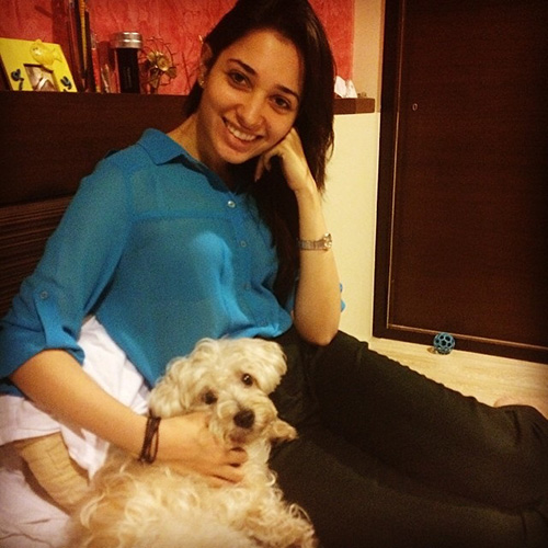 15. Doggie Diaries files - 10 Amazing Pictures Of Tamanna Without Make Up