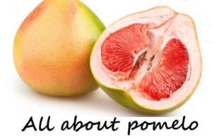 health benefits uses of pomelo 300x196 - Are Pomelo Benefits are Good For Health ?