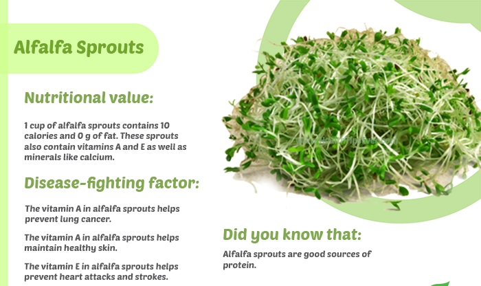vegetables infographic Alfalfa Sprouts - Unbelievable Health Benefits Of Alfalfa Sprouts