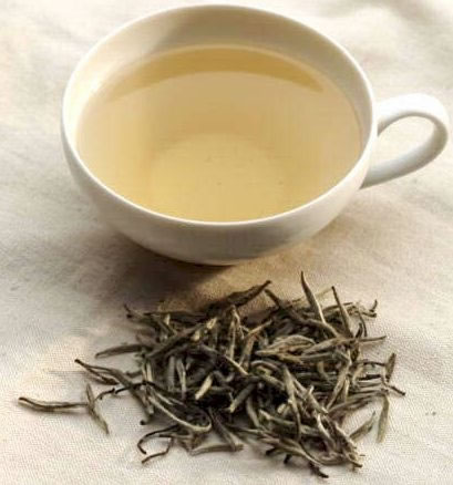 white tea cup - Amazing Health Benefits of White tea