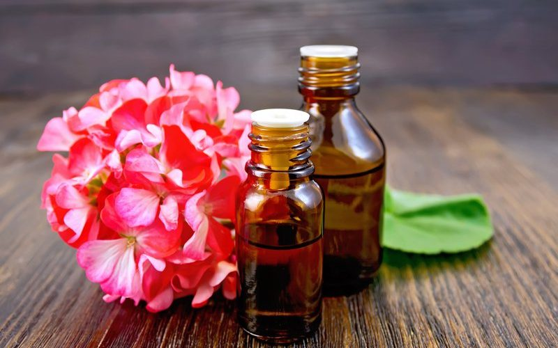 Health Benefits of Geranium