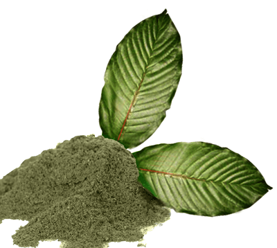 Wonderful Health Benefits Of Kratom