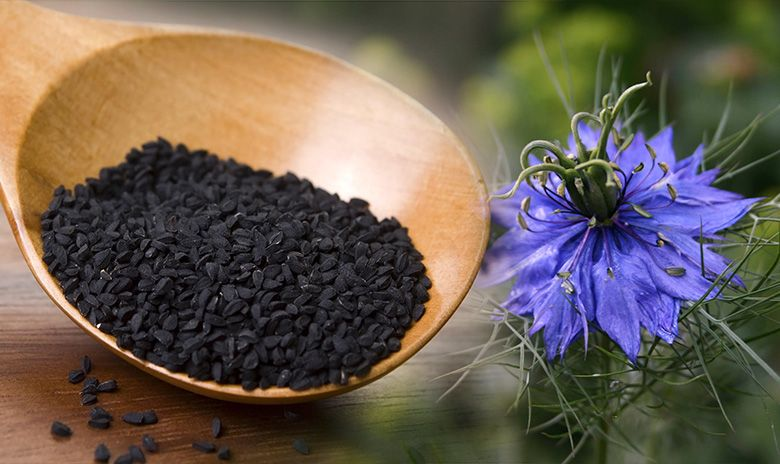 Kalonji Oil Black Seed Health Benefits and Side Effects - Benefits of Using Kalonji Black Seed Oil For Baldness