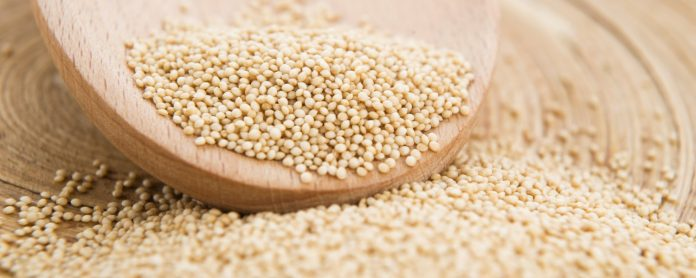 7 Reasons To Indicate Amaranth is a Super food