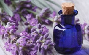 Lavender Essential Oil1 300x185 - Astonishing Benefits Of Hyacinth Herb For Hair, Health And Skin