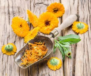 calendula 300x250 300x250 - Wonderful Benefits Of Rue Herb For Hair, Health, and skin