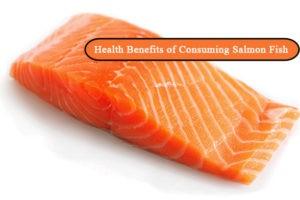 Health Benefits of Consuming Salmon Fish 300x200 - Benefits of Consuming Salmon Fish
