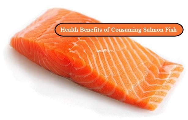 Health Benefits of Consuming Salmon Fish - Benefits of Consuming Salmon Fish