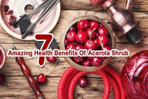 7 Amazing Health Benefits Of Acerola shrub