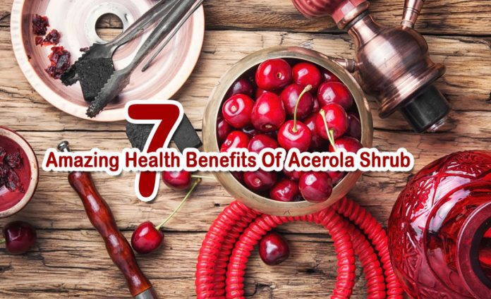 7 Amazing Health Benefits Of Acerola shrub