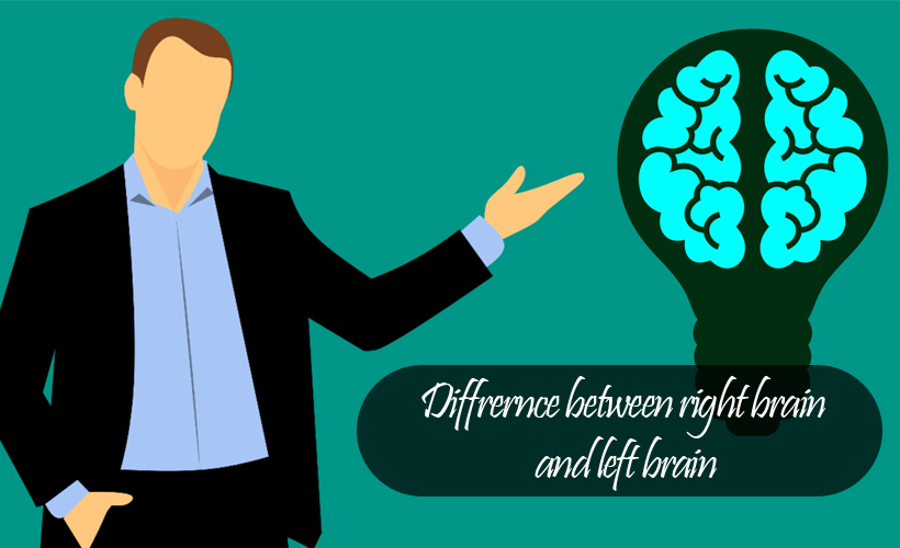 Untitled 5 - What's the Difference Between the Right Brain and Left Brain?
