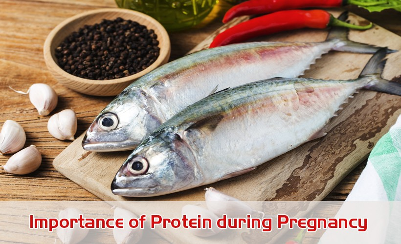 2ll82 - Importance of Protein during Pregnancy