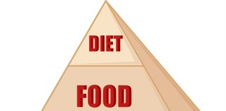 Food Pyramid for Kids – Know the Key Components
