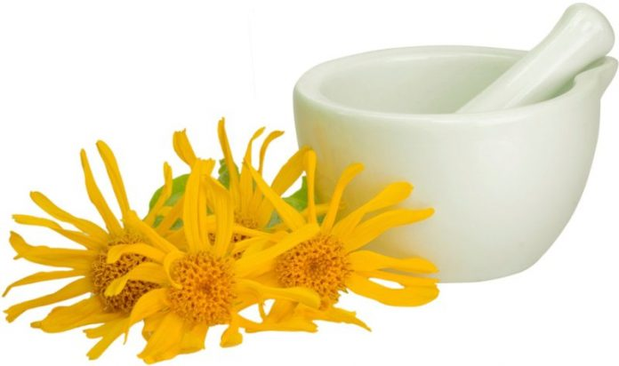 15 Incredible Benefits of Arnica Tea