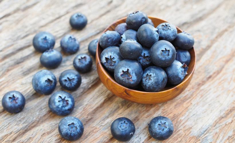 7 Surprising Elderberries Benefits