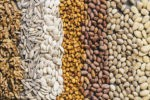Types of Seed: 4 Important Types