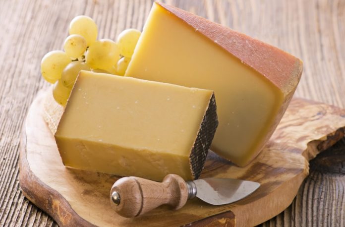 7 Best Fontina Cheese Substitutes