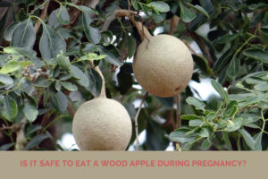 wood apple during pregnancy 300x200 - Is it safe to eat a wood apple during pregnancy?