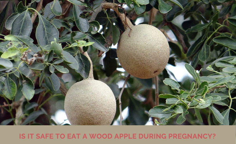 wood apple during pregnancy 820x500 - Is it safe to eat a wood apple during pregnancy?